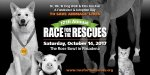 Race for the Rescues Los Angeles